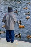 pojken duckar matningar Arkivfoton