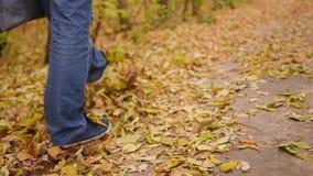 Pojken går i Autumn Park, gulingsidor lägger underfoot Sportar utomhus lager videofilmer