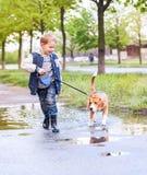 Pojken går med husdjuret till och med pölen efter vårregn arkivfoton