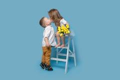 Pojken ger buketten och kysser flickan som isoleras på en blå bakgrund Royaltyfria Bilder