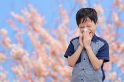 Pojken har allergier från blommapollen royaltyfri foto