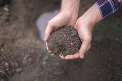 Pojken har planterat ett ungt träd in i jorden brown räknad dagjord som miljölövverk går den gående gröna treen för text för slog Royaltyfri Bild