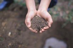 Pojken har planterat ett ungt träd in i jorden brown räknad dagjord som miljölövverk går den gående gröna treen för text för slog Fotografering för Bildbyråer