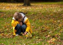 Pojken i parkerar i hösten, att huka sig ned som rymmer för att fatta royaltyfria bilder