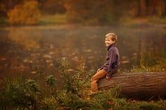 Pojken i trädet Royaltyfri Bild