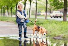 Pojken med hunden går till och med pölen royaltyfri foto