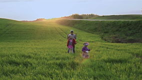 Pojken och flickan dansar på en grön äng stock video