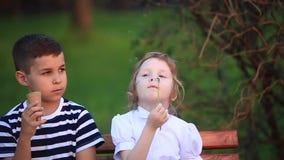Pojken och flickan sitter på bänken Kör runt om parkera och blåsa maskrosor stock video