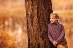 Pojken på trädet Arkivbild