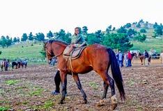 Pojken rider en häst Arkivfoton