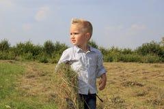 Pojken rymmer ett hö Fotografering för Bildbyråer