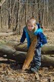 Pojken samlar vedträ i skogen fotografering för bildbyråer