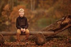 pojken ser upp trän Royaltyfri Foto
