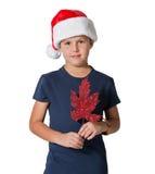Pojken som poserar med garnering för julgran Arkivbilder