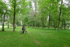 Pojkeridningcykel på den gröna dungen Arkivfoto