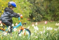 Pojkeritt en cykel Arkivbild