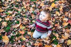 Pojkesammanträde på blad täckt jordning som ser upp Fotografering för Bildbyråer