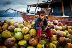 Pojkesammanträde på det stora berget av kokosnötter det indiska havet Arkivfoton