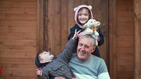 Pojkesammanträde på farfarknä, flickaanseende bakom och kram Syskongrupp som spelar med leksakfår som skrattar 4K Arkivfoto