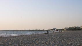 Pojketonåringar som spelar med hunden på horisonten, medan gå på havsstranden Sommaraktivitet arkivfilmer