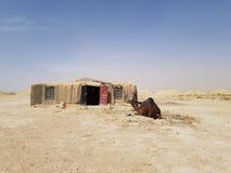 Pokój w pustyni obraz royalty free