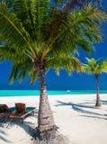 Pokładów krzesła pod umrellas i drzewka palmowe na plaży zdjęcia stock