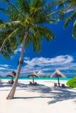 Pokładów krzesła z parasolami i drzewkiem palmowym na plaży obraz stock