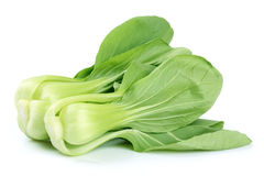 Pok Choi Stock Photos