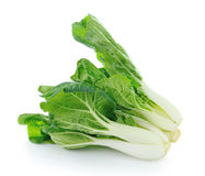 Pok Choi on white background Stock Image