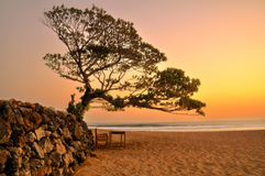 Pok Tunggal Beach Stock Images