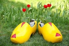 pokaż tulipanu Zdjęcia Royalty Free