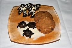 Pokaz Czekoladowi żółwie i drzewka palmowe na cukier plaży z asortowanymi ciastkami na piasku barwił półkowego i białego tło obraz stock