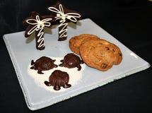 Pokaz Czekoladowi żółwie i drzewka palmowe na cukierze wyrzucać na brzeg z asortowanymi ciastkami na białym talerzu czarnym tle i fotografia stock