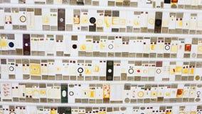 Pokaz insekty i mikro życie na neonowym widzu w Grant muzeum zoologia Londyn obrazy stock
