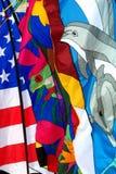 pokaz kolorowa flagę Fotografia Royalty Free
