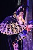 Pokazuje Weneckich karnawałowych magika iluzjonisty Raman polewki barszcze Obraz Royalty Free