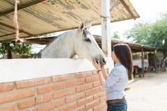 Pokazywać miłości I afekcji W kierunku konia zdjęcie stock