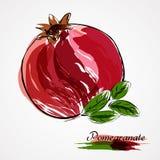 pokazywać uśmiechniętej kobiety owocowy granatowiec Obrazy Royalty Free