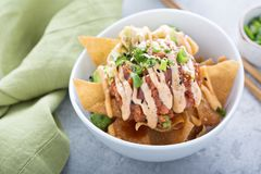 Poke bowl with fried wonton wrappers Royalty Free Stock Photo