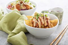 Poke bowl with fried wonton wrappers Stock Image