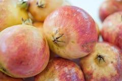 Poke pomegranate Royalty Free Stock Image