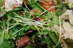 Poke salad. Close-up in a poke salad with tuna and salmon Stock Images