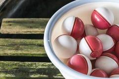 Pokeball sulla ciotola di plastica & su x28; Pokemon Ball& x29; immagine stock libera da diritti