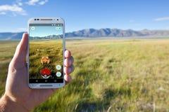 Pokemon GÅR mötet i ett gräs- fält Royaltyfri Bild