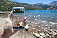Pokemon VA incontro alla riva del lago Immagine Stock Libera da Diritti