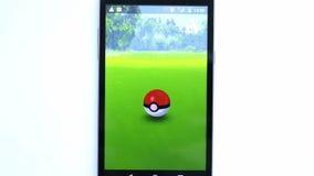 Pokemon va juego en blanco Zubat almacen de video