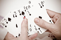 Poker. Female hands holding some cards poker Stock Images