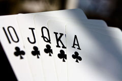 Poker game. Card showing royal flush of clubs Royalty Free Stock Images