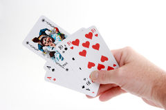 Poker joker. Playing Poker with a joker. in poker you're lucky if the joker is in the leaf Stock Images