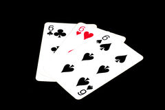 Pokerkarten, Spassvögel Lizenzfreie Stockfotografie